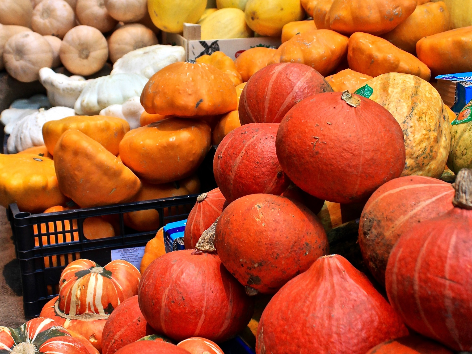 Pumpkins autumn halloween borough market London fall